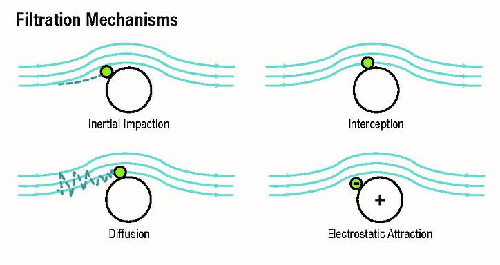 filtration mechanisms